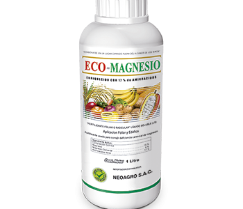Eco Magnesio W