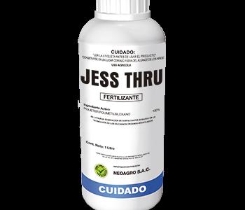 JessThru